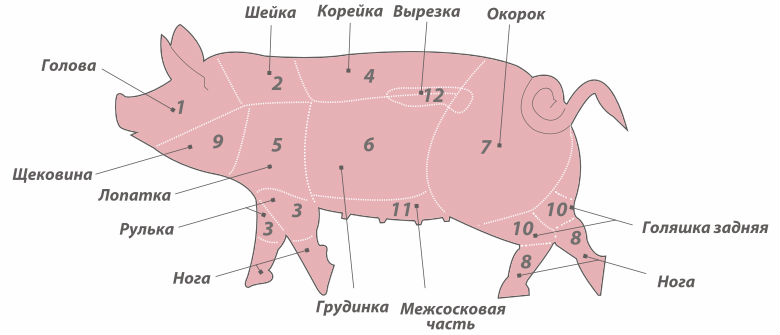 Где находиться свиная корейка