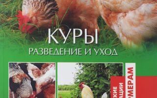Лучшие книги по птицеводству