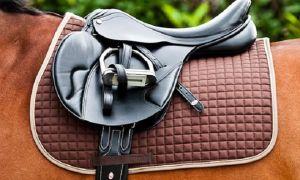 Описание и создание потника и вальтрапа для лошади своими руками