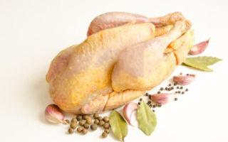 В чем польза мяса цесарки и есть ли вред