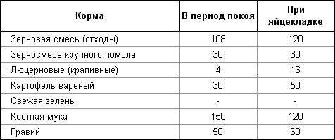 Таблица норм еды для цесарок во время покоя и при яйцезакладке
