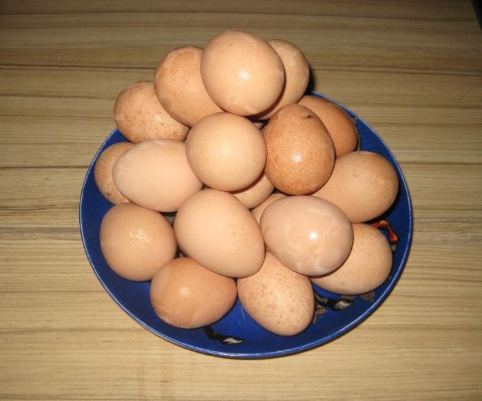 Яйца цесарки для помещения в инкубатор