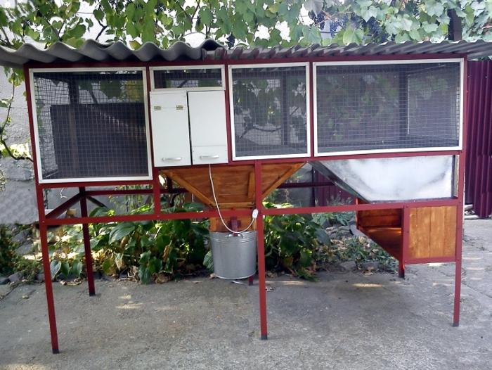 Домашняя клетка для нутрий во дворе