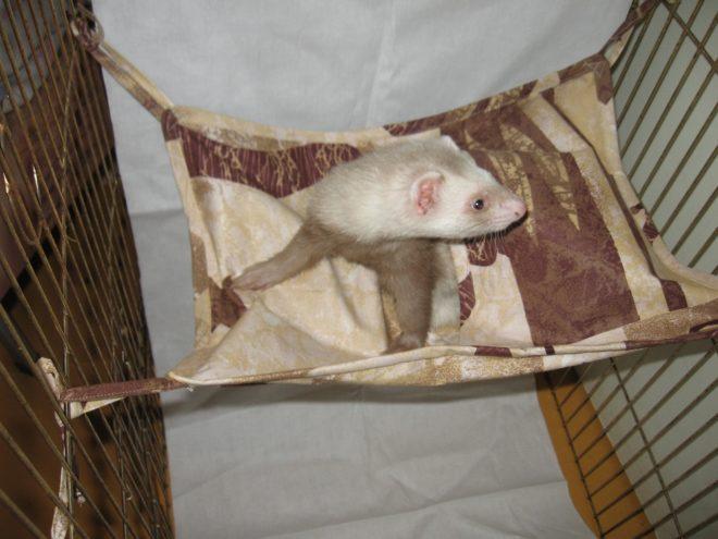 Гамак из ткани также подходит