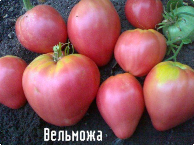 Геркулесовая каша рецепт пошагово 30