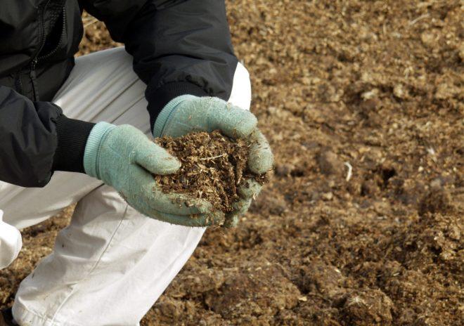 Органические удобрения увеличивают урожай