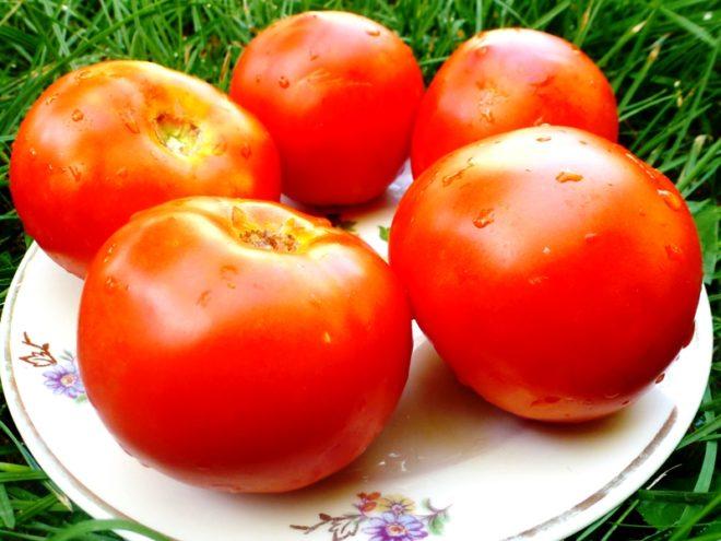 """Томаты """"Белый налив"""" популярны у любителей овощей"""