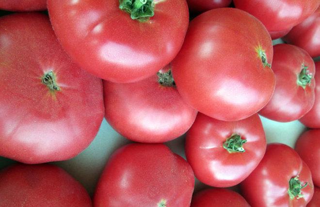 """В томатах """"Розмарин"""" много витамина А"""