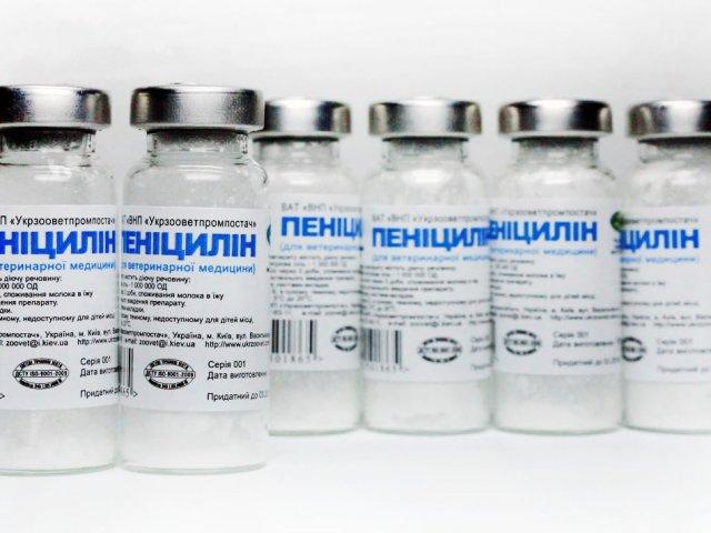При лечении пастереллеза используется пенициллин