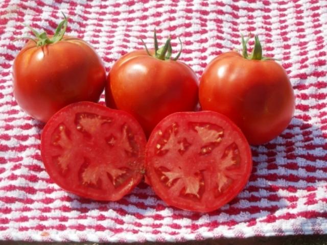 """Гибридные томаты """"Линда"""" большие по размерам"""