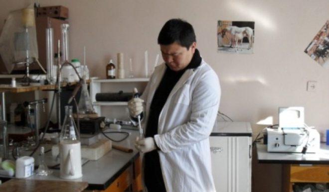 Сперму хряка нужно правильно подготовить к осеменению