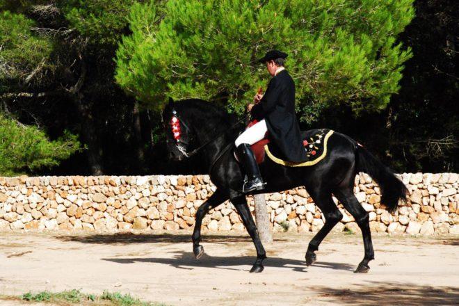 Андалузская лошадь использовалась в военных парадах