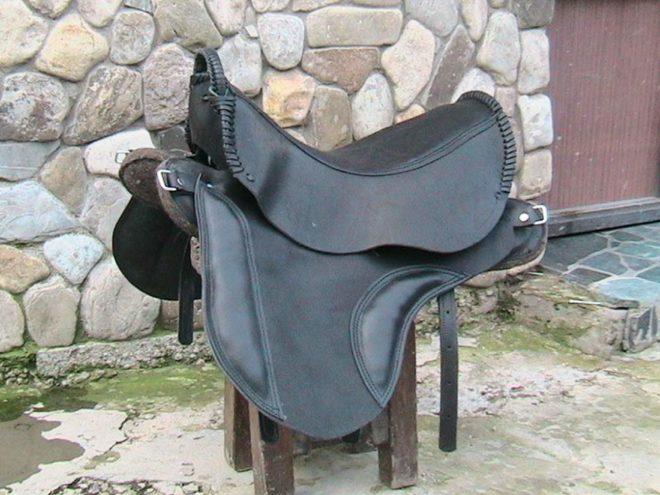 Неправильно подобранное седло вредно для здоровья лошади