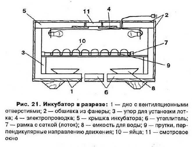 Усложненный вариант строения инкубатора