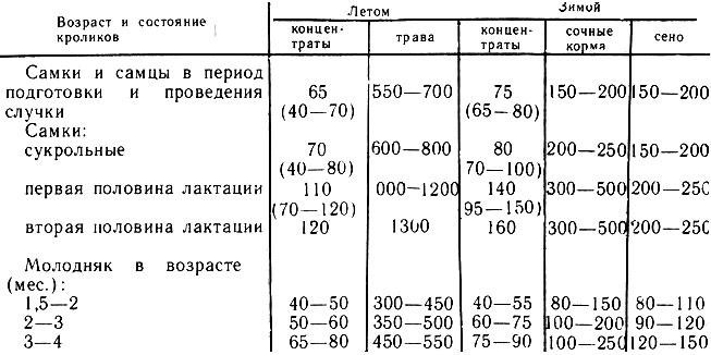 Таблица ежедневного расчета кормов для кроликов
