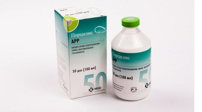 Вакцина «Порцилис ПСВ» вызывает длительный иммунитет