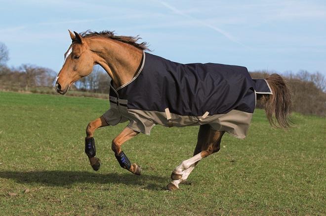 Лошадь надо измерить, чтобы попона ей подходила