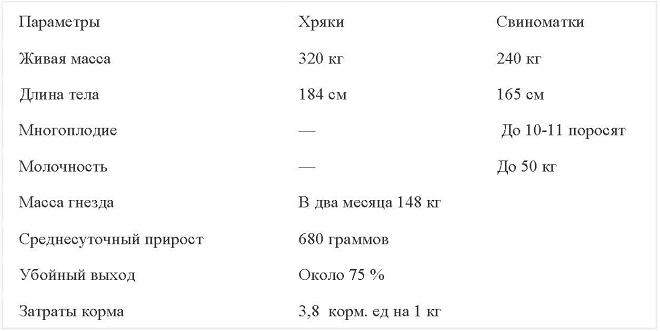 В украинской степной рябой породе свиней крупные особи