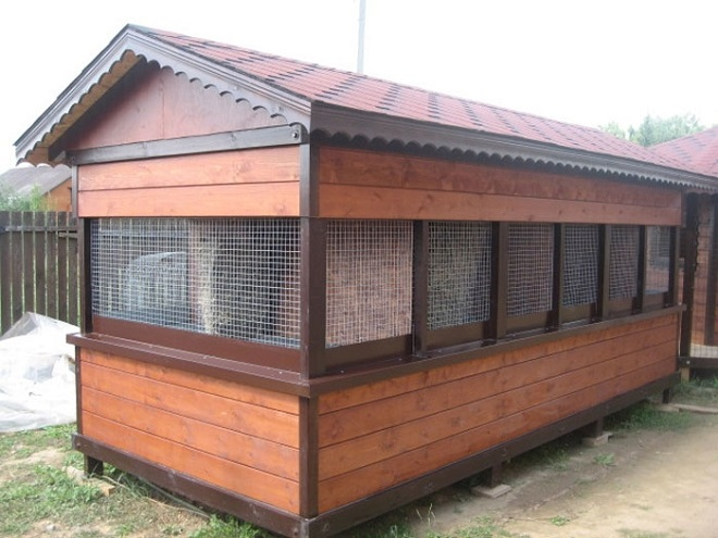 Зимуют кролики в сарае
