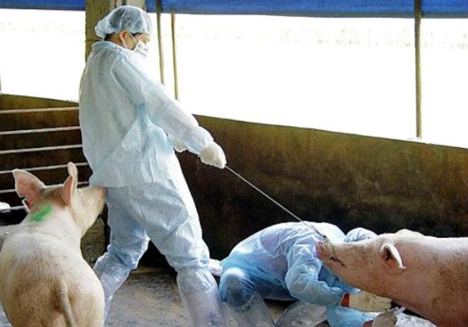 Проведение уколов с сывороткой против рожи