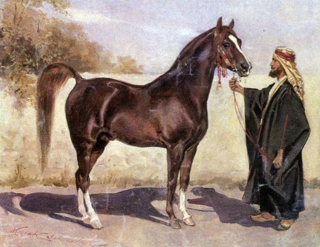 Бедуины занимались формированием арабской породы