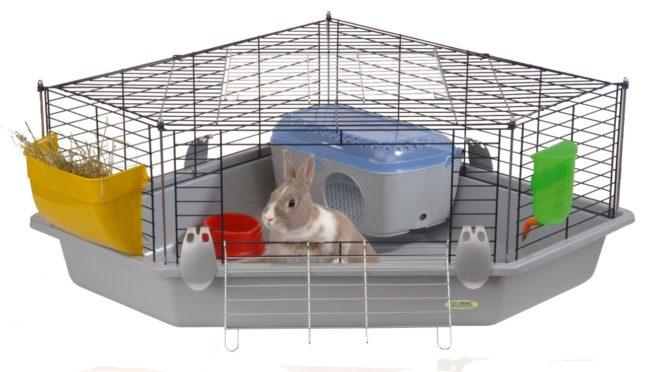 Декоративный кролик нуждается в специально оборудованном месте