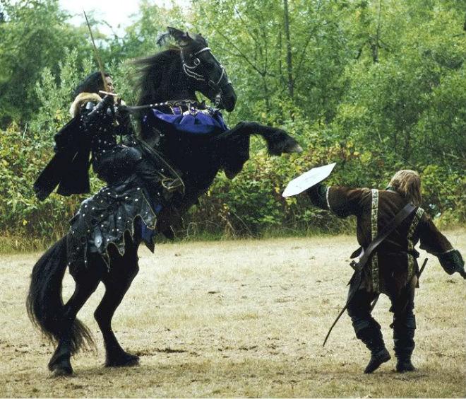 Фризская порода лошадей популярна в наше время