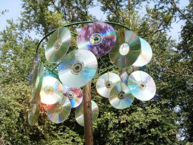 Компакт-диски эффективны для отпугивания голубей