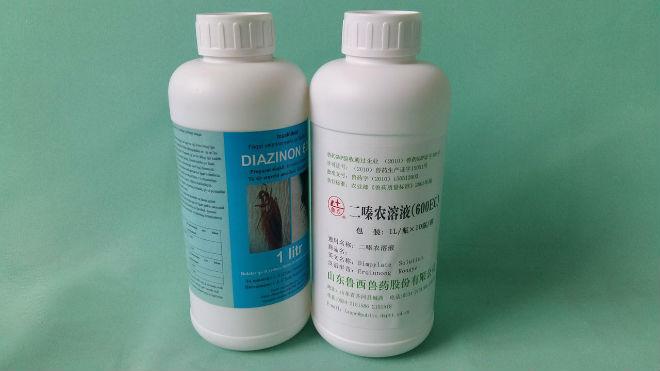 Отрава для голубей - инсектицид «Диазинон»