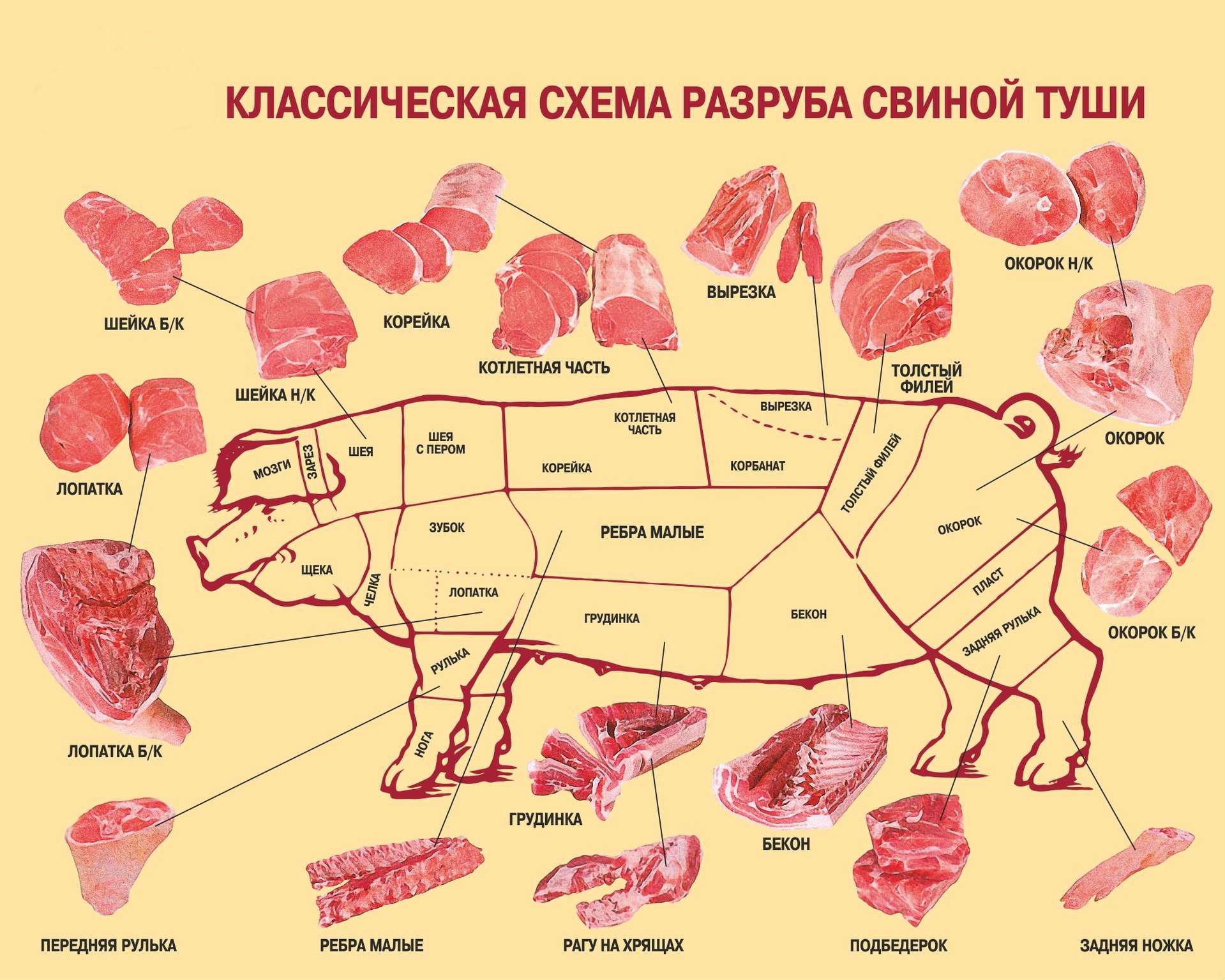 Разруб свиной туши по классической схеме