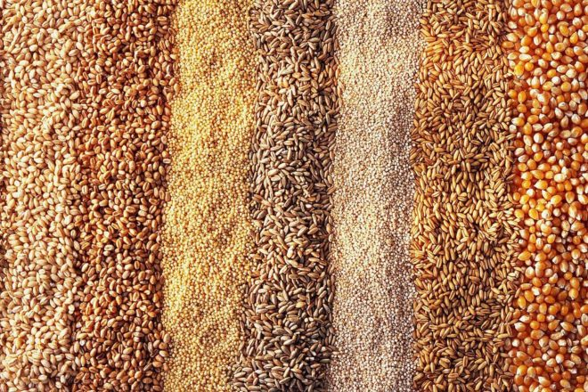 Зерно для комбикорма