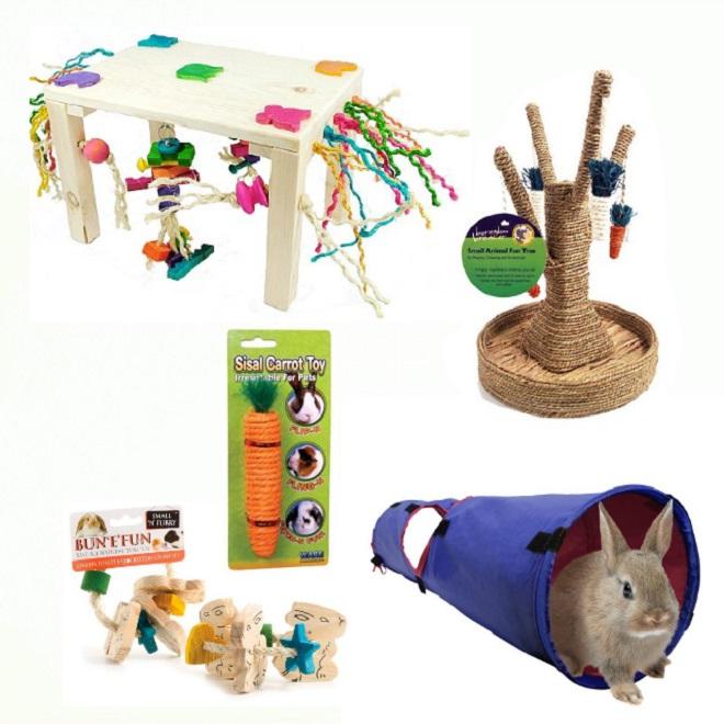 Кроликам нужны специальные игрушки для снижения агрессии
