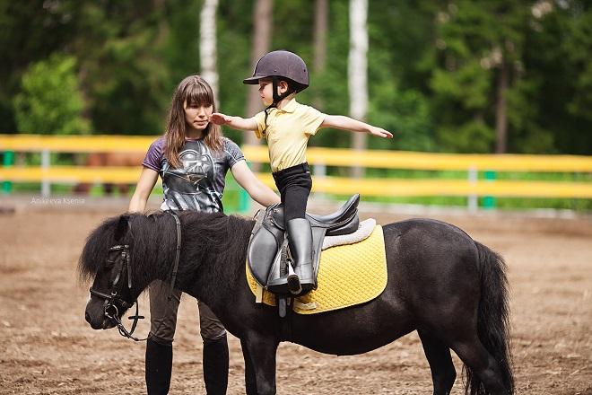Без необходимых знаний и навыков вы не сможете сесть на лошадь