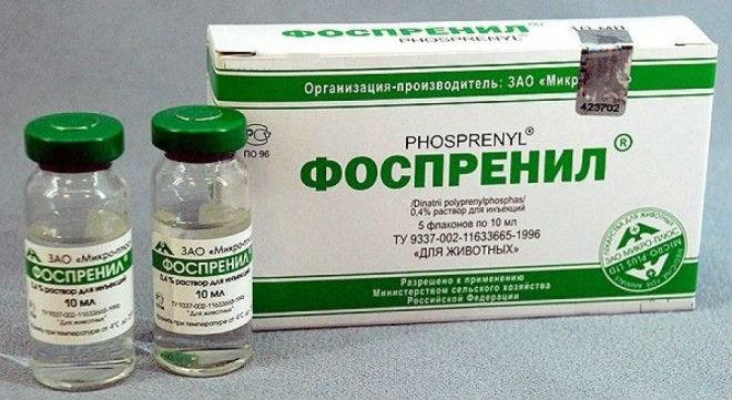 Лечат болезнь Ньюкасла иммуностимулятором «Фоспренил»