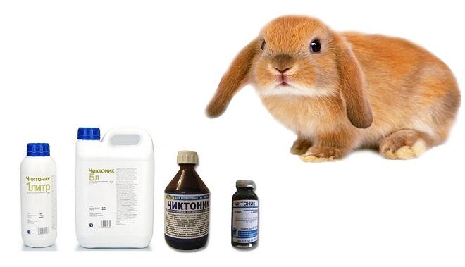 Чиктоник обогащает питомца витаминами и аминокислотами