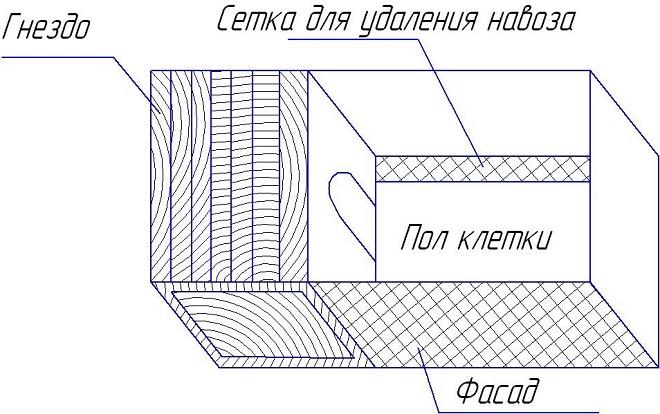 Схематичное изображение устройства клетки, вид сверху