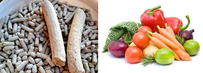 Гранулированный корм, морковь, капуста - лучшее питание для гигантов