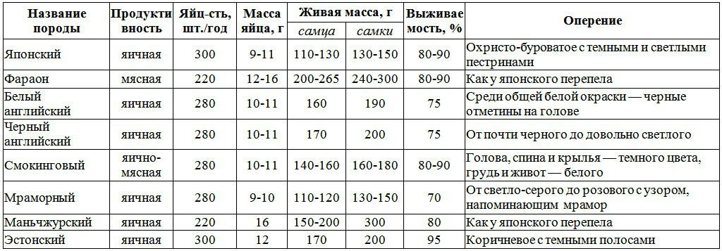 Сравнительная таблиц основных пород перепелов