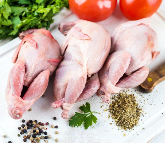 Многие выращивают перепелиных ради диетического мяса