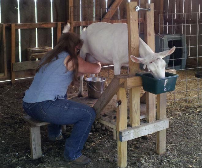 Конструкция станка позволяет надёжно фиксировать коз