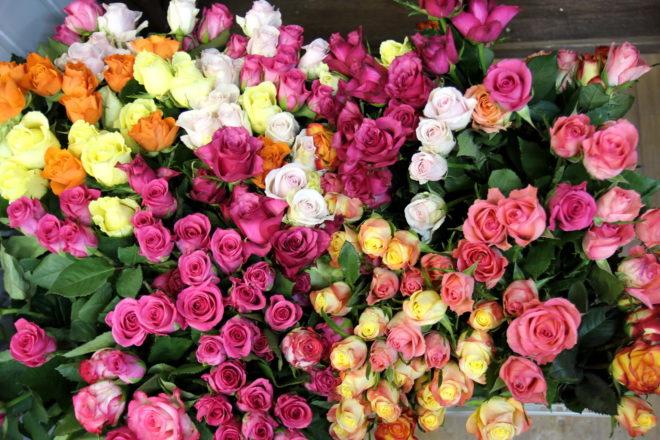 Ассортимент этих цветов очень широкий