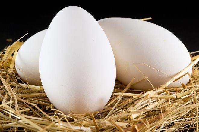 При покупке яиц обратите внимание на скорлупу