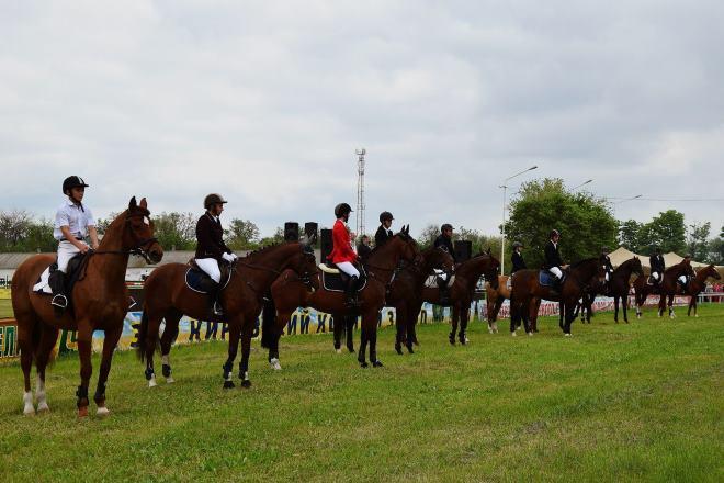Федерация конного спорта имени Кирова